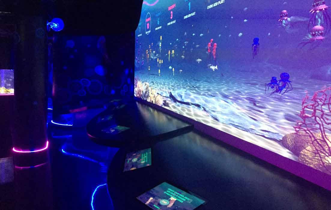 New Jellyfish Attraction At Sea Life London Aquarium